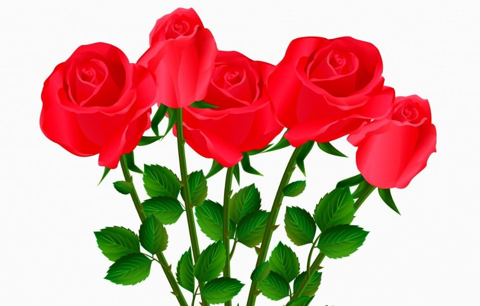 valentinesday_cancerhjlpen_2020